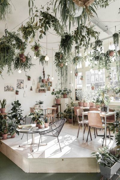 Giardini romantici: lights & plants X Urban Jungle Bloggers