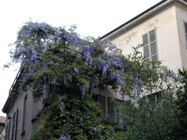 Milano romantica: luoghi segreti per innamorati
