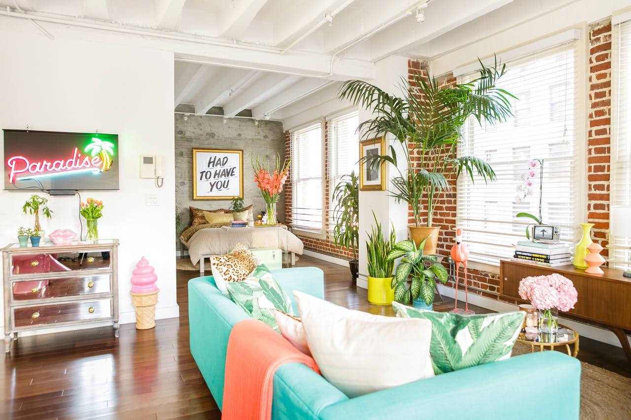 Home Tour   Arredare un bilocale con piante e colori