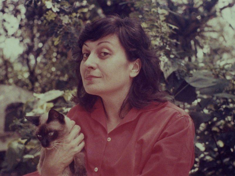Architetta   Lina Bo Bardi: un'italiana in Brasile