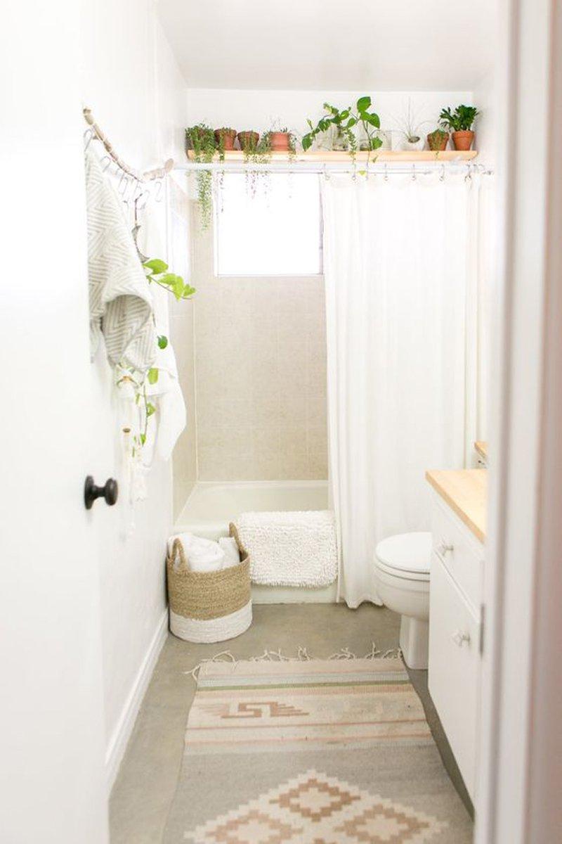 Jungle bath | Guida alle piante in bagno - Architempore