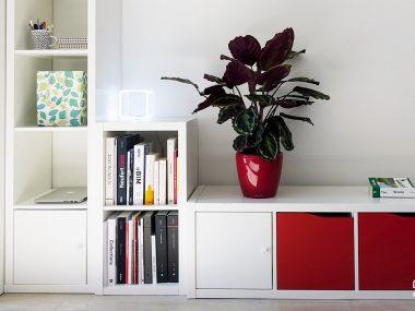 Fare spazio in casa: idee post decluttering