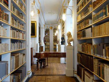 Libri in fila sugli scaffali, tra i modi per organizzare la libreria