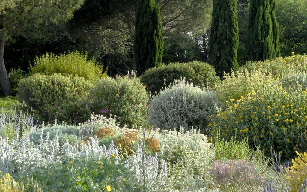 Come scegliere le piante da esterno seguendo uno stile